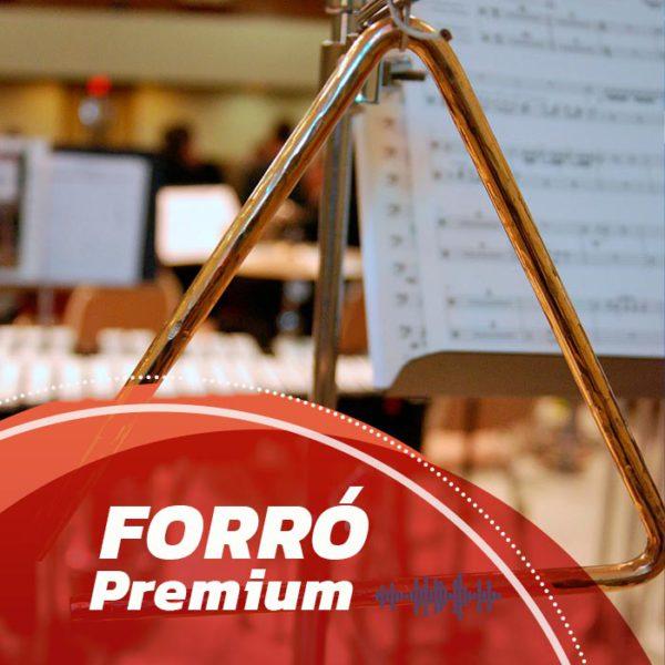 gravar música online - Forró Premium